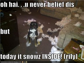 oh hai. . .u never belief dis but today it snowz INSIDE! (rily)