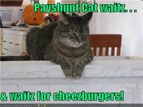Payshunt Cat waitz. . .  & waitz for cheezburgers!