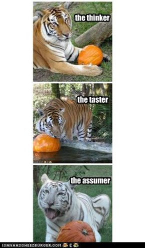 Types of tigers that eat new foods