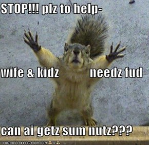 STOP!!! plz to help- wife & kidz            needz fud can ai getz sum nutz???