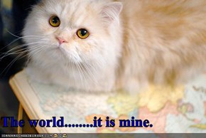The world........it is mine.