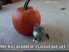 We has problem. Is nawt pie yet.