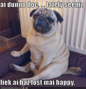 ai dunno doc. . . lately seemz  liek ai haz lost mai happy.
