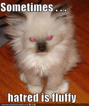 Sometimes . . .  hatred is fluffy