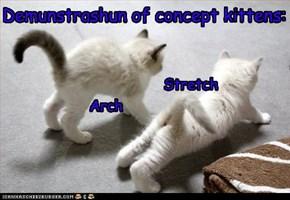 Demunstrashun of concept kittens: