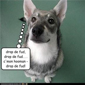 drop de fud, drop de fud. . . c'mon hooman - drop de fud!