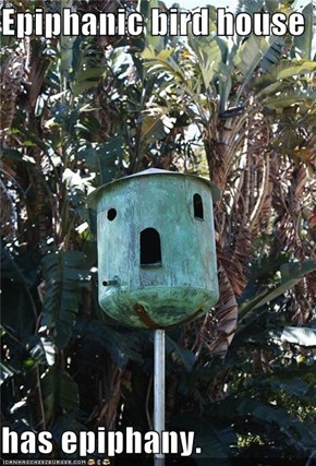 Epiphanic bird house   has epiphany.