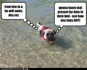 frow him in & he will swim, dey sez