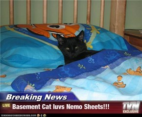 Breaking News - Basement Cat luvs Nemo Sheets!!!
