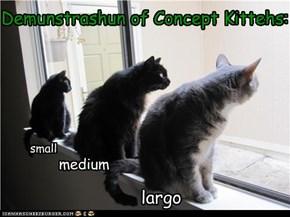 Demunstrashun of Concept Kittehs: