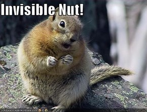 Invisible Nut!