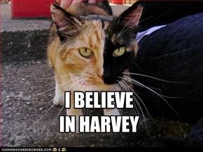 I BELIEVE  IN HARVEY