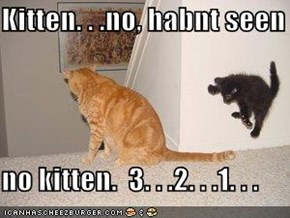 Kitten. . .no, habnt seen   no kitten.  3. . .2. . .1. . .
