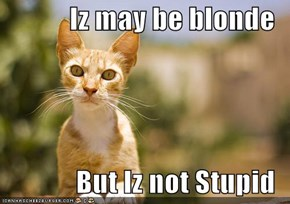 Iz may be blonde  But Iz not Stupid