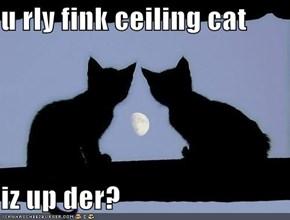 u rly fink ceiling cat  iz up der?
