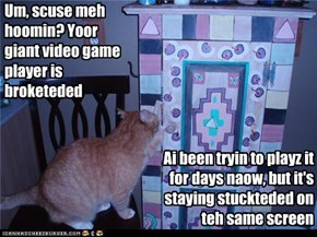 Um, scuse meh hoomin? Yoor giant video game player is broketeded
