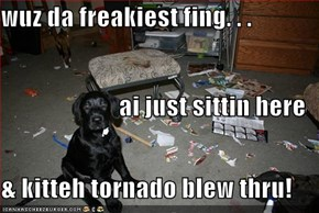 wuz da freakiest fing. . . ai just sittin here & kitteh tornado blew thru!
