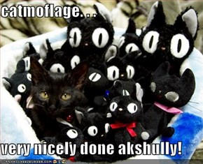 catmoflage. . .   very nicely done akshully!