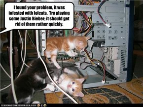 I found your problem, it was infested with lolcats.  Try playing some Justin Bieber; it should get rid of them rather quickly.