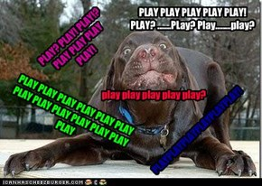 PLAY? PLAY! PLAY!? PLAY PLAY PLAY PLAY!