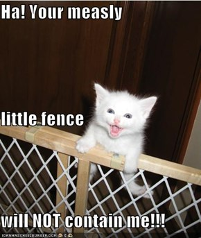 Ha! Your measly little fence will NOT contain me!!!