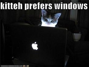 kitteh prefers windows