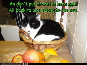 An dun't put froots in here agin! All baskitz are belong to me now.