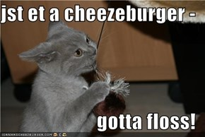 jst et a cheezeburger -  gotta floss!