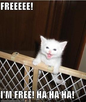 FREEEEE!  I'M FREE! HA HA HA!