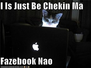 I Is Just Be Chekin Ma  Fazebook Nao