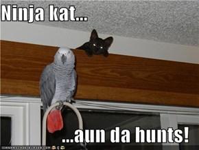 Ninja kat...  ...aun da hunts!