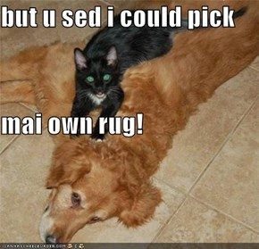 but u sed i could pick mai own rug!