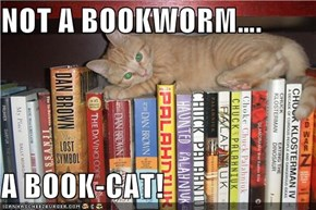NOT A BOOKWORM….  A BOOK-CAT!