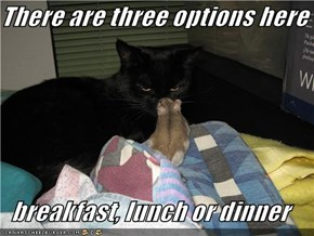 There are three options here  breakfast, lunch or dinner