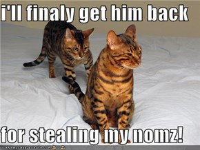i'll finaly get him back   for stealing my nomz!