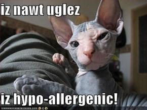 iz nawt uglez  iz hypo-allergenic!
