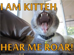 I AM KITTEH  HEAR ME ROAR!!