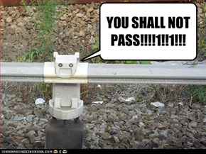 YOU SHALL NOT PASS!!!!1!!1!!!