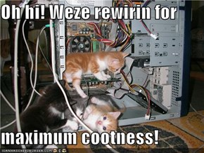 Oh hi! Weze rewirin for  maximum cootness!