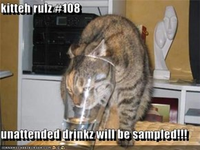 kitteh rulz #108  unattended drinkz will be sampled!!!