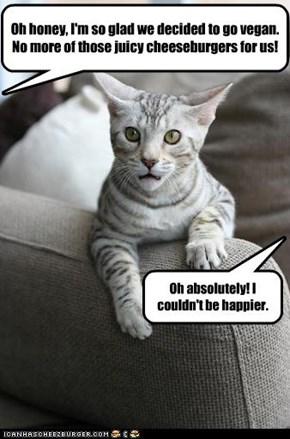 Unwilling veegun kitteh