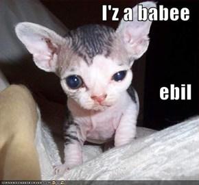 I'z a babee ebil