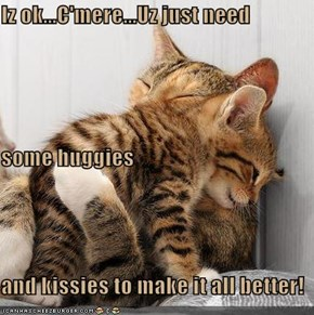 Iz ok...C'mere...Uz just need  some huggies  and kissies to make it all better!