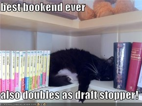 best bookend ever  also doubles as draft stopper!