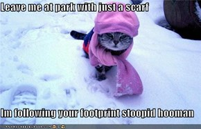 Leave me at park with just a scarf  Im following your footprint stoopid hooman