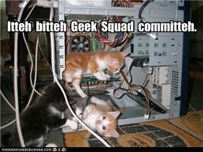 Itteh  bitteh  Geek  Squad  committeh.