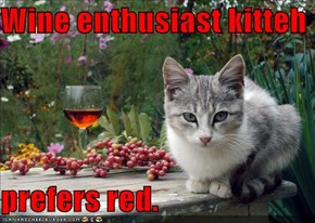 Wine enthusiast kitteh  prefers red.