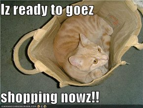 Iz ready to goez  shopping nowz!!