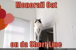 Monorail Cat  on da Short Line