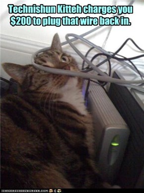 Technishun Kitteh charges you $200 to plug that wire back in.